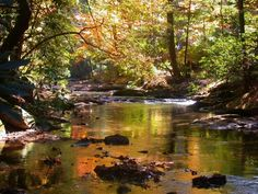 Mountain creek Georgia