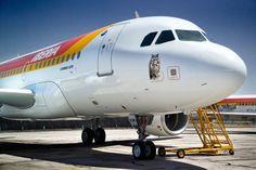 """Nuestro avión """"Búho Real"""", con nombre de especie protegida"""