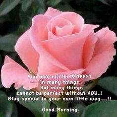 Good Morning Inspirations Good Morning Inspiration, Tuesday Morning, Morning Quotes, Encouragement, Wisdom, Night