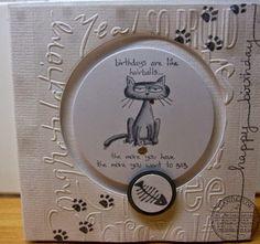 cat spinner card - bjl
