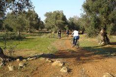 Itinerario in bici nel Salento | Vizionario