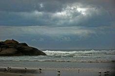 """""""Quando eu morrer voltarei para buscar  Os instantes que não vivi junto do mar...""""(S.M.B.Andersen)  foto:Gk."""