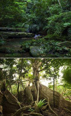 星野リゾート リゾナーレ 西表島 : 沖縄県