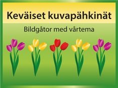 Keväiset kuvapähkinät #aivojumppa #ryhmätoiminta #muistipeli #kevät #pääsiäinen #ryhmät #muisti Easter Coloring Sheets, Easter Colouring, Kindergarten, Herbs, Education, Spring, Plants, Teacher Stuff, Easter Coloring Pages