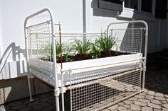 An Antique Crib Becomes a Garden