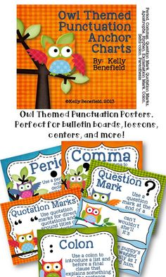Owl Themed Punctuation Posters.$