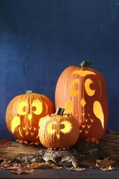 27 Creative and Scary Pumpkin-Carving Ideas for Halloween. Halloween spooky decoration ideas with pumpkins. Creative pumpkins decoration ideas for Halloween. Halloween indoor and outdoor decoration ideas. Owl Pumpkin Carving, Funny Pumpkin Carvings, Amazing Pumpkin Carving, Pumpkin Carving Patterns, Scary Pumpkin, Pumpkin Faces, Diy Pumpkin, Carving Pumpkins, Pumpkin Ideas
