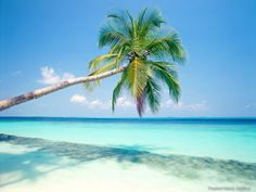 See you in less than a week Punta Cana! <3