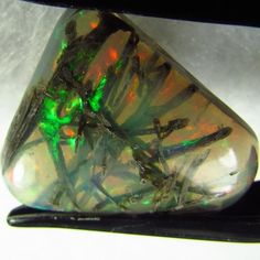 4.58ct Rare Opal Collector Specimen with Petrified Wood 15x13 mm Free-form VV NV