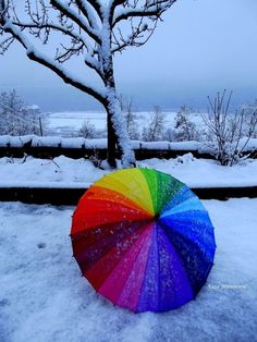 Rainbow Multi-coloured umbrella in Winter Love Rainbow, Taste The Rainbow, Over The Rainbow, Rainbow Colors, Rainbow Stuff, White Rainbow, Color Splash, Color Pop, World Of Color