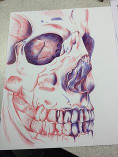 Red and blue biro drawing in progress by A.Green