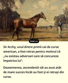 Neil Armstrong, Apollo 11, Bob Marley, Hollywood, Horses, Movie Posters, Animals, Bob Morley, Animales