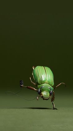 Music bug