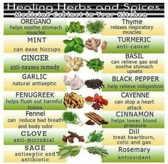 Healing herbs and spices. Oregano mint ginger garlic fenugreek clove fennel sage rosemary dill cinnamon cayenne black pepper basil turmeric thyme