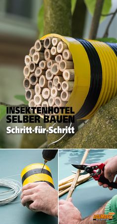 Build the insect hotel yourself, Category garden projects projects projects for kids projects for schools projects ideas projects uk projects with pallets projects with wood School Projects, Projects For Kids, Diy For Kids, Diy Garden Projects, Wood Projects, Bug Hotel, Bees And Wasps, Chickens Backyard, Insects