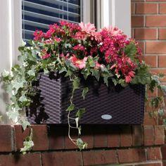 Self-Watering Rectangular Planter Set