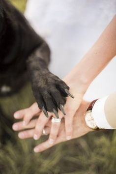 I know if my husband and I had our dogs when we got married, I would have wanted a picture just like this. Nothing says your dog is a part of your family than including him or her in the wedding pictures! I actually know a couple to photoshopped their dog into their wedding photos after the fact! A little extreme, but to each his own…