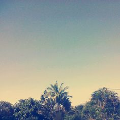 #sun #blue #sky #tropical #974 #island #paradise
