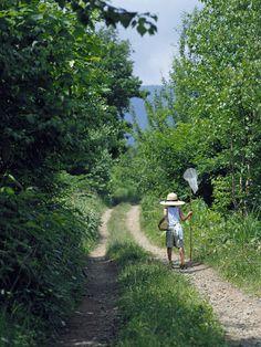 【画像まとめ】お前ら大好き夏の田舎スレ!!!!! : ネギ速