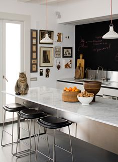 Beautiful kitchen. (Maybe sans kitty on the counter.) // Photo by Mark Gregory Peters http://www.mgpfoto.com/
