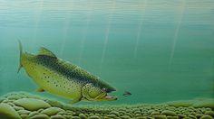 Dierschildering vis brown trout x cardinal wet fly