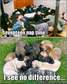 from the story Unthinkable (A Seventeen Love Story)(BWAM) by (💜Jisung'sBabygirl💜) with 242 reads. Woozi, Wonwoo, Jeonghan, Diecisiete Memes, Funny Kpop Memes, Bts Got7, Moorim School, Haha, Seventeen Memes