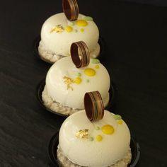 Stone pate a bombe chocolat blanc insert cremeux yuzu #arnaudchristophe #chocolate #patisserie #pastry #french #instafood #yummy #yuzu