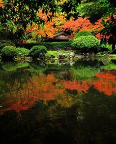 fall reflections by *dresdenblue on deviantART Portland Japanese Garden