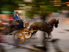 Read about photographer Jim Richardson's experience with travel photography and get advice on trying new photography techniques, such as panning, from National Geographic.