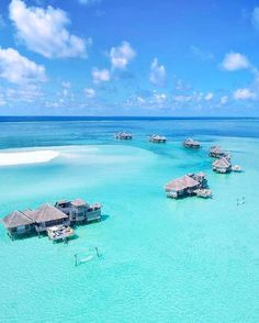 Gili Lankanfushi #Maldives Photo @alexpreview #nofilter #honeymoon #goals #swim #theview #happiness #pure #endlessblue #turqoise #photooftheday #instagram #beautifuldestinations #luxuryworldtraveler #beauty #wonderful #loveu #heaven #beachday #couplegoals #body #türkiye #urlaub #reisen #voyage #viagem #wonderful #romantic