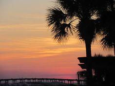 181 listings: Destin FL real estate, condos & homes for sale. Search Emerald Coast and homes online using established Destin realtors at Destin Real Estate, LLC Destin Florida, Florida Beaches, Condos For Sale, Beach Photos, Luxury Homes, Celebration, Bridge, Coast, Real Estate