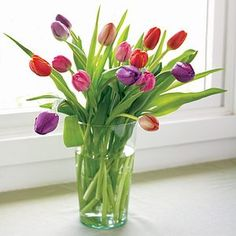 I'm learning all about Organic Bouquet 15 Stems Colorful Assorted Tulips at @Influenster!