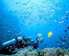 9 destinatii subacvatice pentru scafandrul din tine
