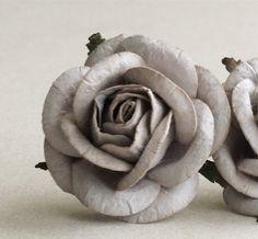 Dior Grey Mulberry Rose