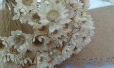Flor Sempre Viva Natural