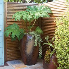 The best vacation spot can sometimes be in your very own backyard. At the enclosed end of this deck, panels made of horizontal tree stakes allow for peace and privacy.