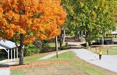 Barren River Lake State Resort Park - Kentucky State Parks