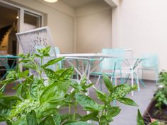 Enjoy in our garden with many vegetables and other plants #CasaBlanca #Croatia #Zagreb #interior #exterior #rooms