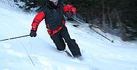 Lanaudière Shovel, Tourism, Dustpan