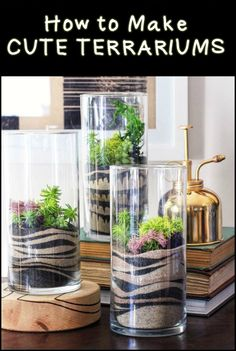 Make a Gorgeous Terrarium to Add Greenery to Your Home
