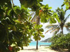 Punta Cana ☀️