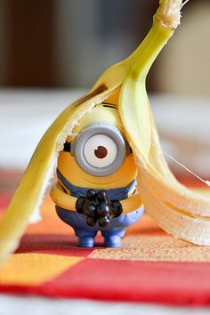 Cyclops : One eyed monster. Minions from despicable me we're consider different… Minions Images, Minion Pictures, Minions Quotes, Cute Pictures, Evil Minions, Cute Minions, Minions Despicable Me, Minion Rock, My Minion