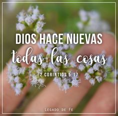 2 Corintios 5:17