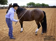 Exercise #3: Yield the Hindquarters, Stage 1  Goal: To be able to disengage the horse's hindquarters 360 degrees with minimal pressure. His inside hind foot should cross over his outside hind foot and he should keep his front feet relatively still.   More about the exercise: https://www.downunderhorsemanship.com/Store/Product/MEDIA/D/252/