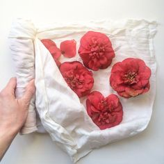 Eco printing experiments – Rebecca Desnos Flower Prints, Natural Dyeing, Printing, Flowers, Diy, Floral Patterns, Bricolage, Floral Prints, Do It Yourself