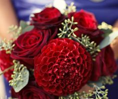 Black beauty roses and burgundy dahlias