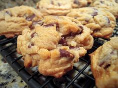 Gluten Free Bisquick Chocolate Chip Cookies (use homemade gluten-free baking mix instead of Bisquick) Cookies Gluten Free, Gluten Free Chocolate Chip Cookies, Gluten Free Sweets, Gluten Free Baking, Gluten Free Recipes, Chocolate Chips, Quick Cookies, Chocolate Cake, Tasty Cookies