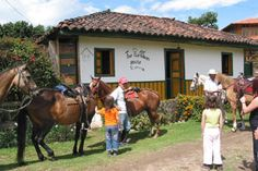 The Plantation House Salento - Stay on a coffee farm in Colombia. Coffee Farm, The Entire Universe, Plantation Homes, Hostel, Bella, Backpacking, Travel Destinations, Beautiful Places, Religion