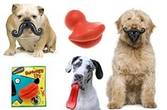 $25 for FIFTY DOLLARS worth of Toys, Clothing, Treats, Accessories and More from BaxterBoo.com