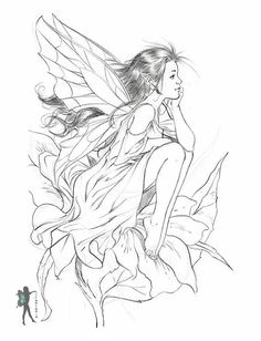 Exotic Fairy Coloring Pages | Visit Enchanted Designs for more Fairy Coloring Books you can buy by ..